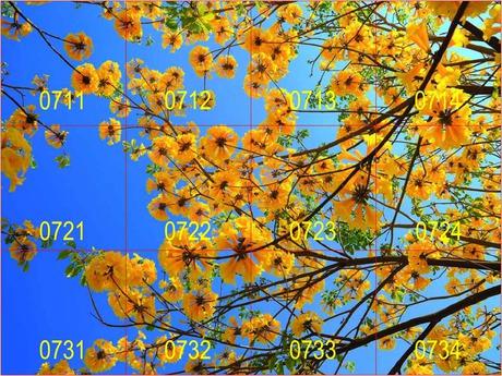 SKY 07.jpg